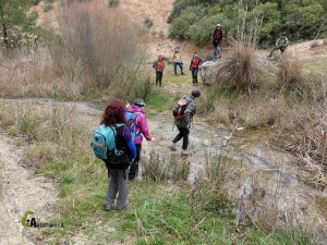 Excursiones por Requena