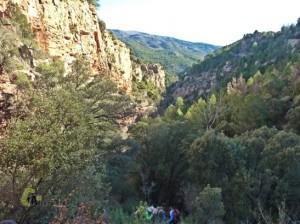 Barranco Nogueras