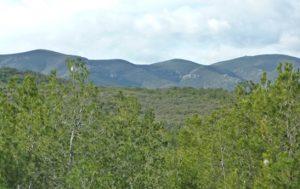 Altos de la sierra de Chiva