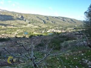 Excursión en Alicante