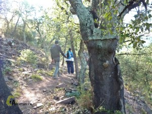 excursión en Onda