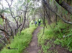 senderismo en Vallehermoso