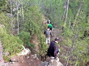 excursiones en Espadilla