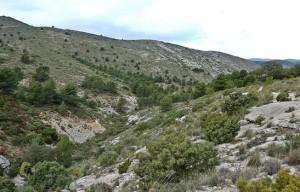 sendero de la Cueva Corrales