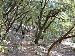 Senderismo en Mallorca