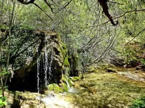 cascadas en el Molinete