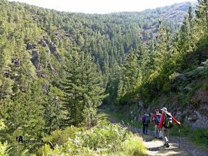 Camino Natural de la Cordillera Cantábrica