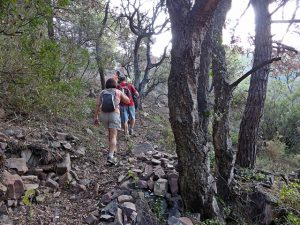 senderismo en la sierra de Espadan