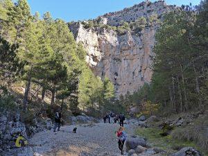 Roca del Cuervo