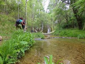 Cascada de Calicanto