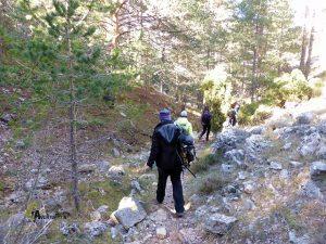 sendero del Barranc del Forn