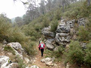 Barranco en la sierra de la Solana