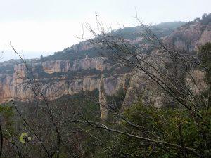 Parajes de la sierra de Montsant