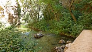 El río Guadalaviar