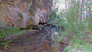 Bonito entorno del río Blanco