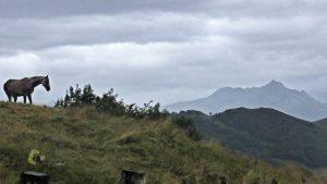 Montañas de Asturias