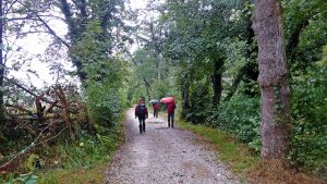Camino junto al río Nalón